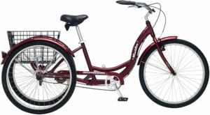 best tricycle for adults