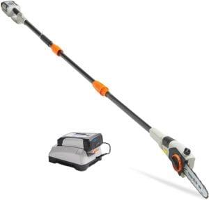 best pole saws
