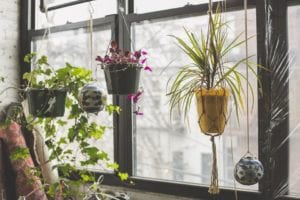 best flower garden ideas