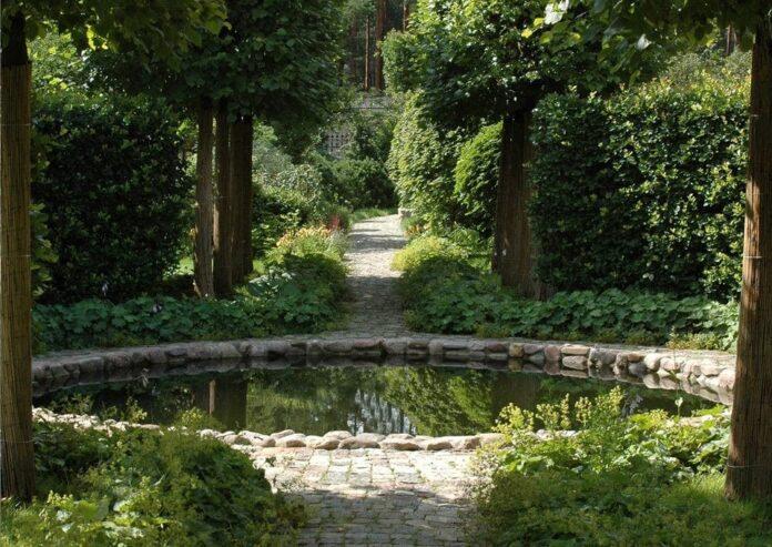 best water garden ideas