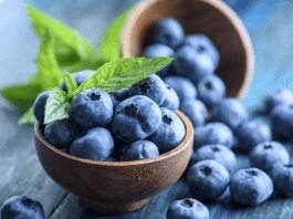 effects of pest damage on blueberries
