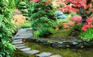how to grow vegetables in a japanese garden